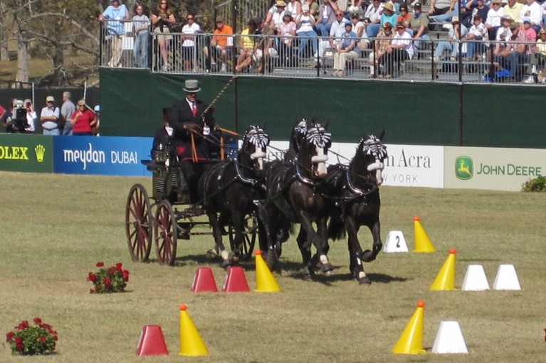 World Equestrial Games